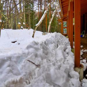 屋根の落雪でスノーダンプが登場!
