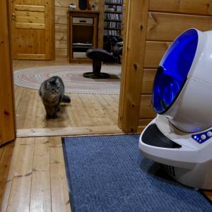 キャットロボットオープンエアーが凄い!