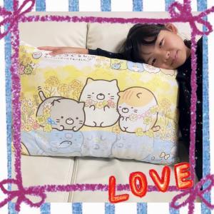 ♪新しい枕♪