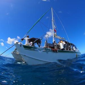 ヨットと風。