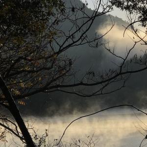 キス、18〜10cmを21匹。ダム湖の気嵐(けあらし)、フレンドリーなイソヒヨドリ