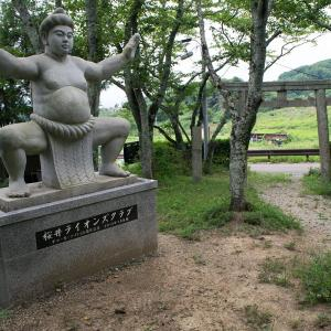 畿内:桜井風土記・「大相撲の発祥の地」