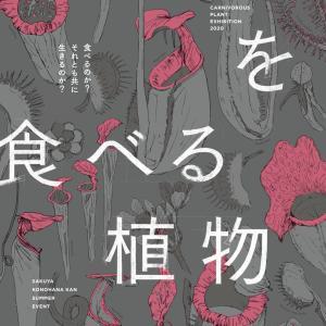 9月21日(月・祝)咲くやこの花館「虫を食べる植物展」でトークセッションを行います