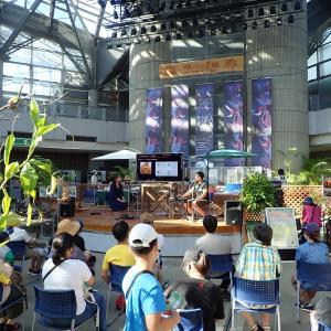 大阪市・咲くやこの花館「虫を食べる植物展2020」トークイベントレポ後半