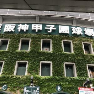 高校野球甲子園大会準決勝 龍ヶ崎市のヘアーサロンバーバーヤマナ 美容室 理容室