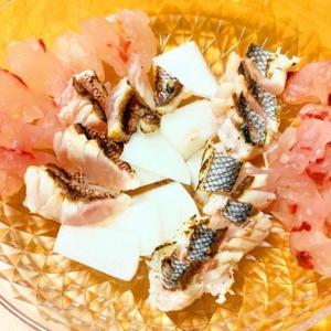 幸せの沖縄県魚のススメ
