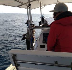 釣り船レクシー(すばる)乗り合いジギングとテンヤタイカブラ