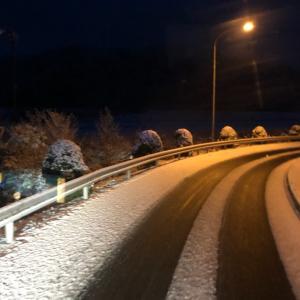 今年1番の雪じゃない?