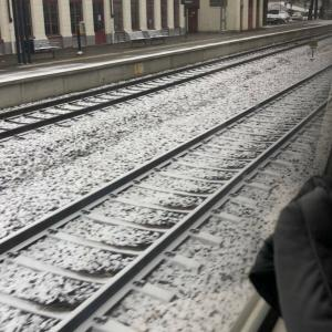 冬が想像できない。。。
