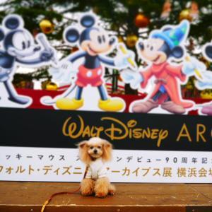 メリークリスマスin横浜