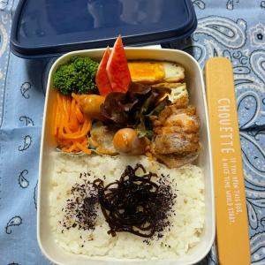 (๑╹ω╹๑ )にーさん今日のお弁当☆冷たい唐揚げのお弁当☆おかずも保冷剤の一部です!