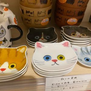 (=^ェ^=)ネコ 猫 ねこ☆