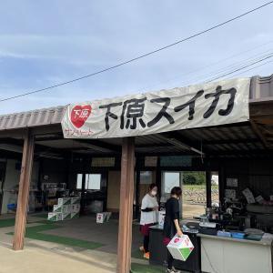 波田のスイカ