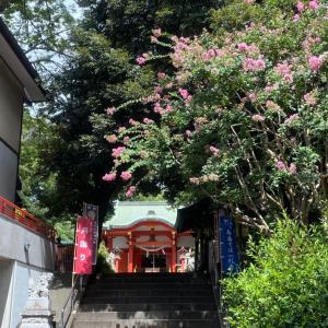 菊の花の手水舎
