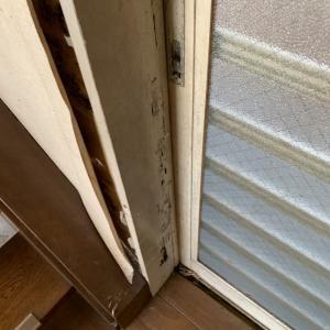シロアリの害があるお家、どう直す?
