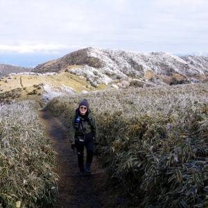 金冠山と達磨山