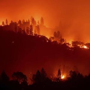 カリフォルニア、ロサンゼルス山火事!