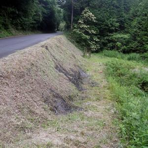 田舎道際の草刈活動
