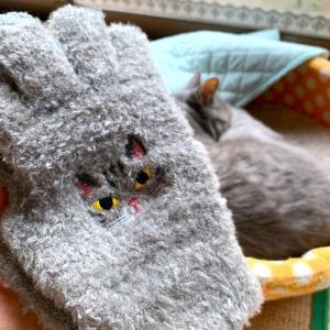 怪しげな手袋、買いました♪