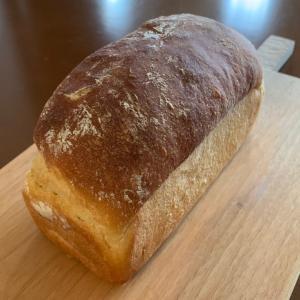 美味しいパン、いろいろ♪