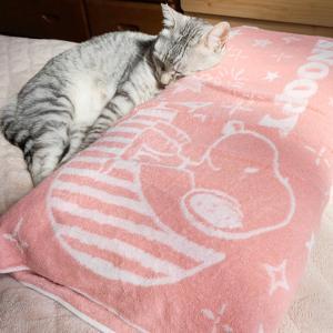 スヌーピー柄の枕カバー♪