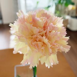 日比谷花壇のお花アプリ♪