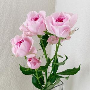 今日の花&収穫野菜♪