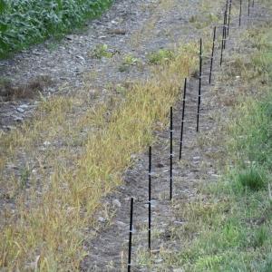 電気牧柵2