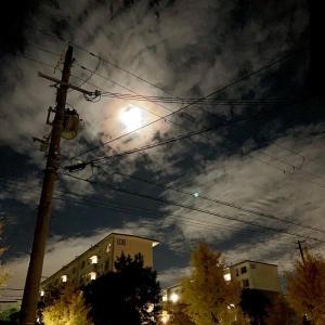 【44日目】牡牛座満月綺麗でした