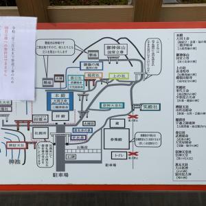 【19日目】2/14 京都神社ツアー⛩その2 出雲大神宮