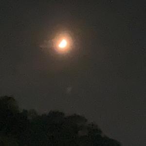 【100日-19日目】月と夕陽と夢とキングダム
