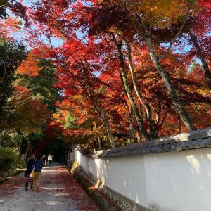 11/14 西脇の道の駅と神社仏閣めぐり