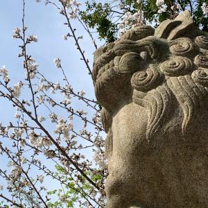 2021年3月の神社仏閣参拝記録