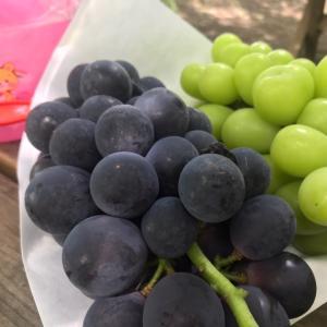 旬のブドウを食べて免疫力UP★抜群の抗酸化作用で、疲労回復、美容、健康、アンチエイジング!