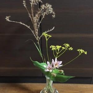 魔法の花瓶も秋らしくなってきました & 我が家の鍾馗水仙