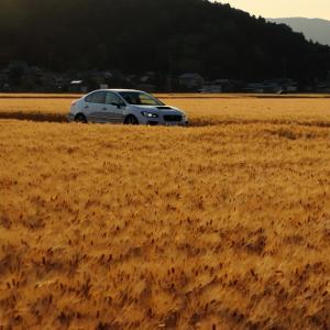 WRX のある、福井の風景