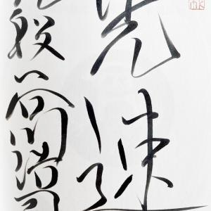 師弟 (棋士たち 魂の伝承) 野澤亘伸