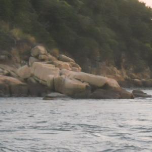 2020 02-25 出崎沖の夜釣り