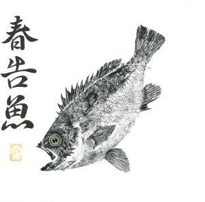 2019 1-22/釣り談話