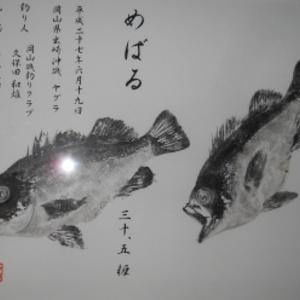 2019 3-29/メバル回想記