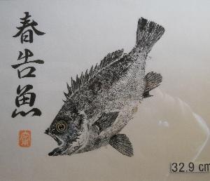 2019 8-26/玉野沖磯の夜釣り