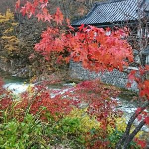 宝川温泉♨