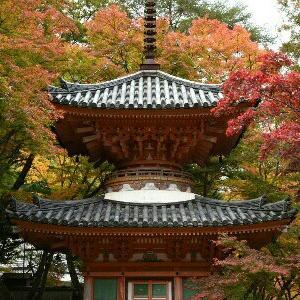 大阪府の旅 【日記】