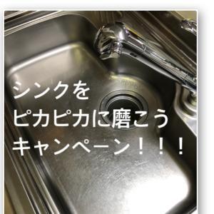 シンクをピカピカに磨こうキャンペーン!!!