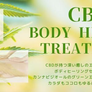 【夏限定】CBDボディヒーリングトリートメントご予約受付中!