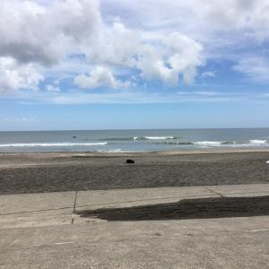 surf 43(第10回 千葉県チャンピオンシップ:NSA公認)