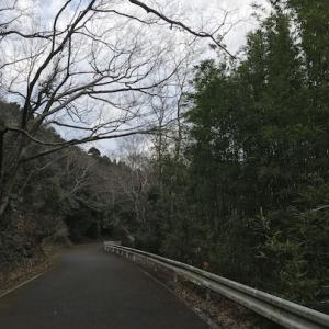 山道を行く中