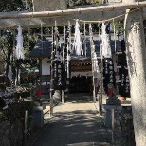 猫神神社詣で