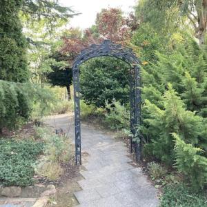 ハーブ園を見に行く。