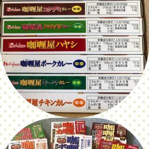 ハウス食品 カリー屋シリーズ10セットモニター